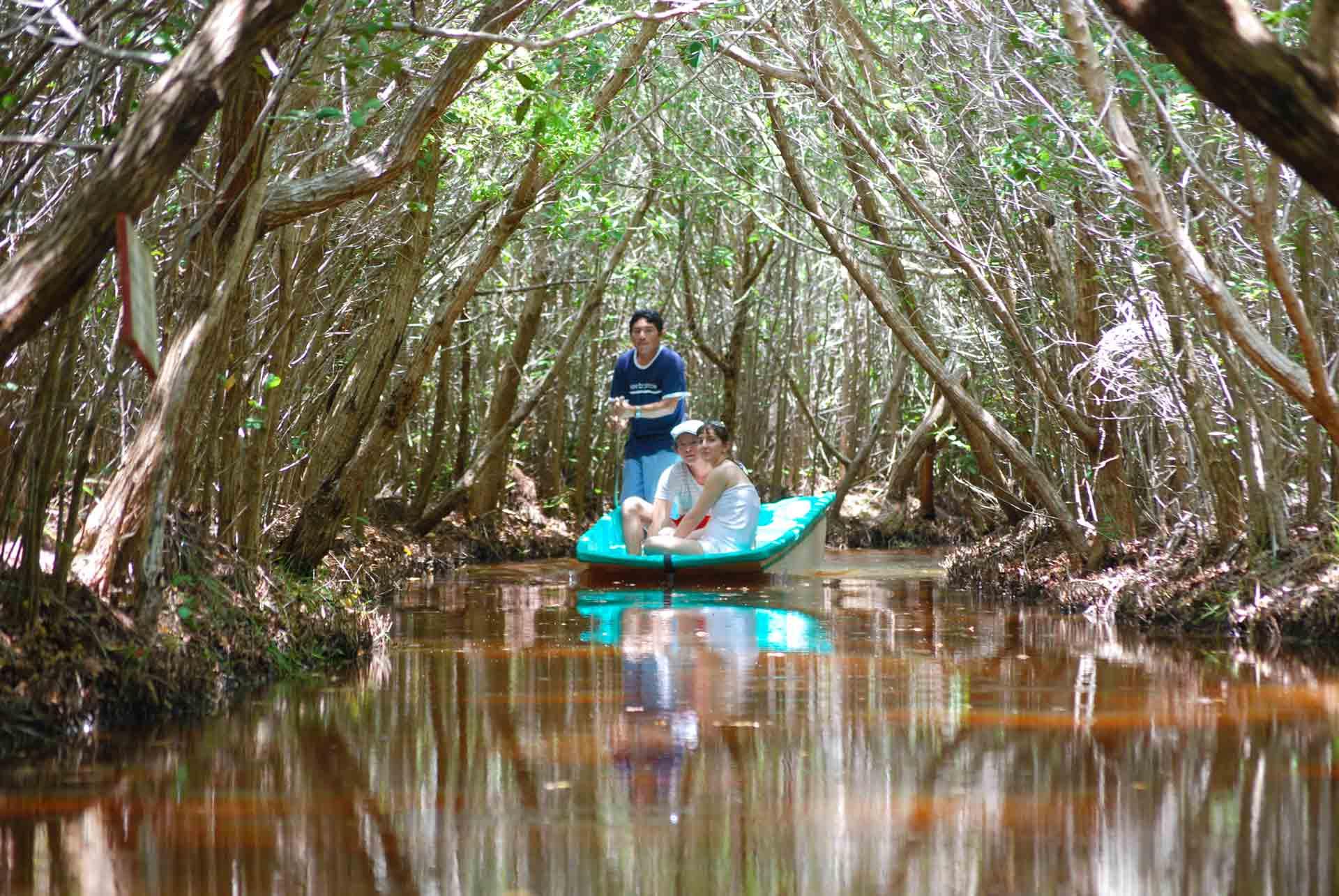 Paseo en el Manglar y Cenote